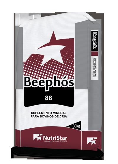 BEEPHÓS 88