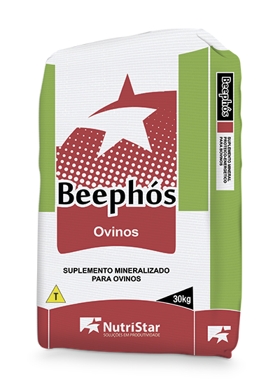 BEEPHÓS OVINOS