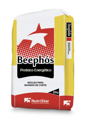 NÚCLEO BEEPHÓS PROTEICO ENERGÉTICO