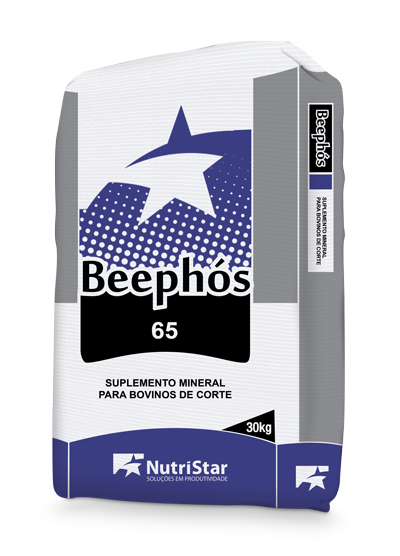 BEEPHÓS 65