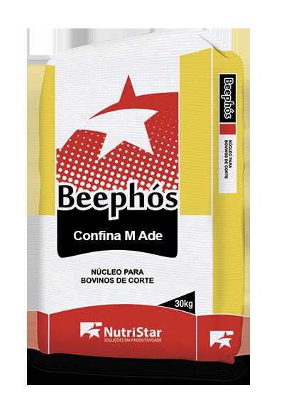NÚCLEO BEEPHÓS CONFINA M ADE